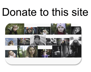 Donate to this site (button)