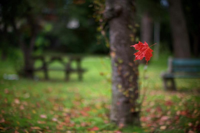 Fall, on edge.