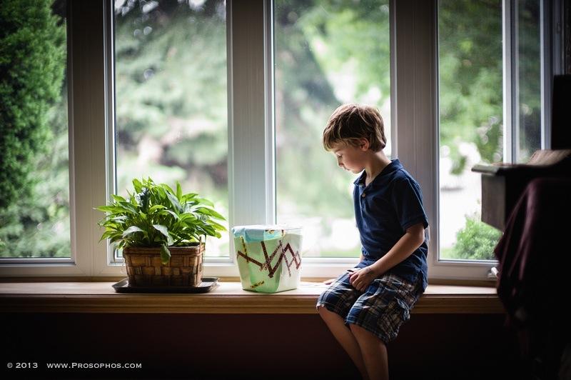 Window studies