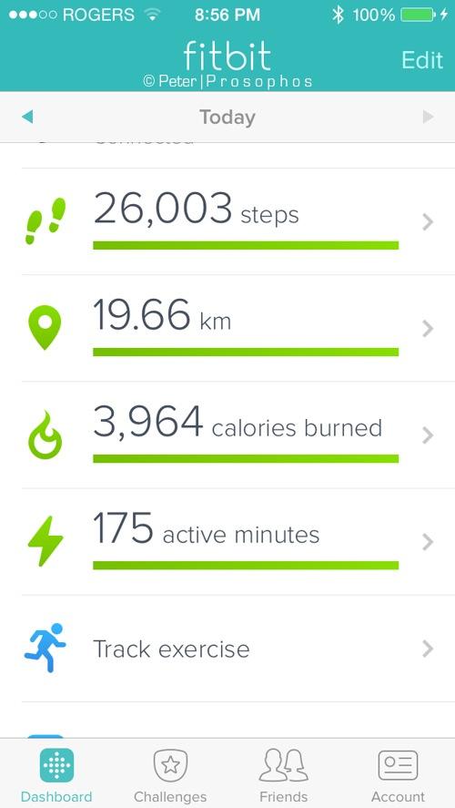 Prosophos - Walk to Work (Day 1)