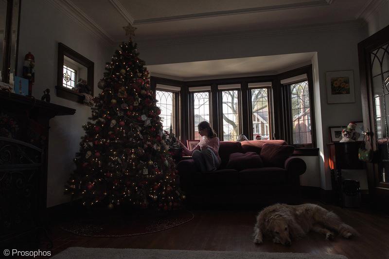 A Christmas Scene