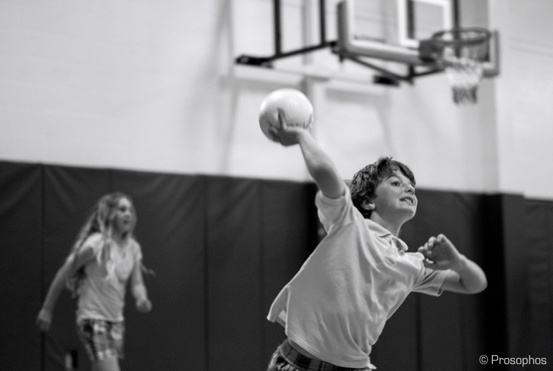 The Dodge Ball Chronicles 14