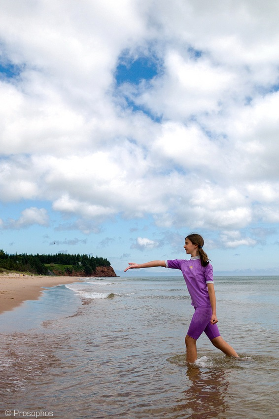 The Beach (Prince Edward Island) 7