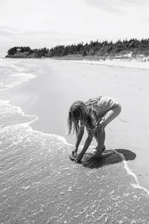 The Beach (Prince Edward Island) 9