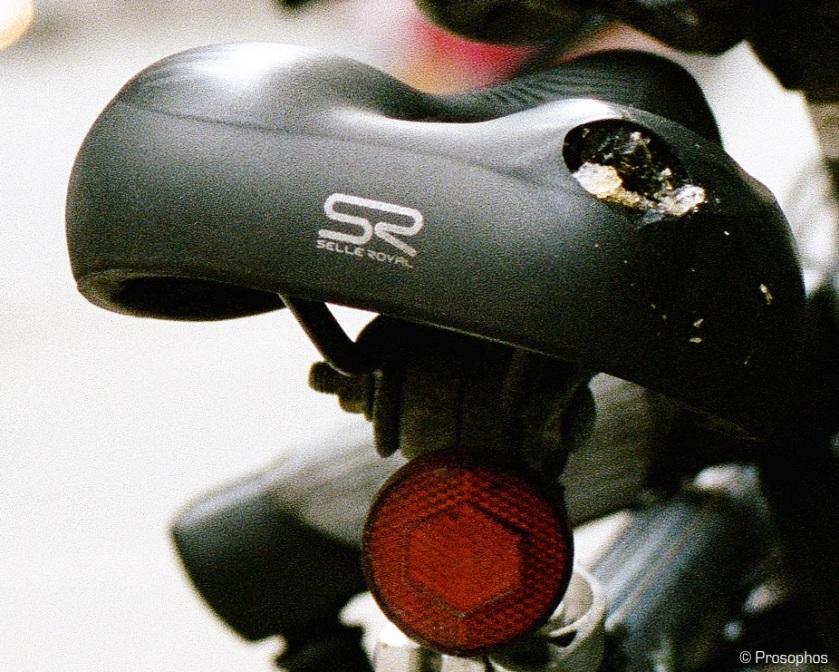 bikes-and-pedestrian-prosophos-test-shot-mamiya-7-crop