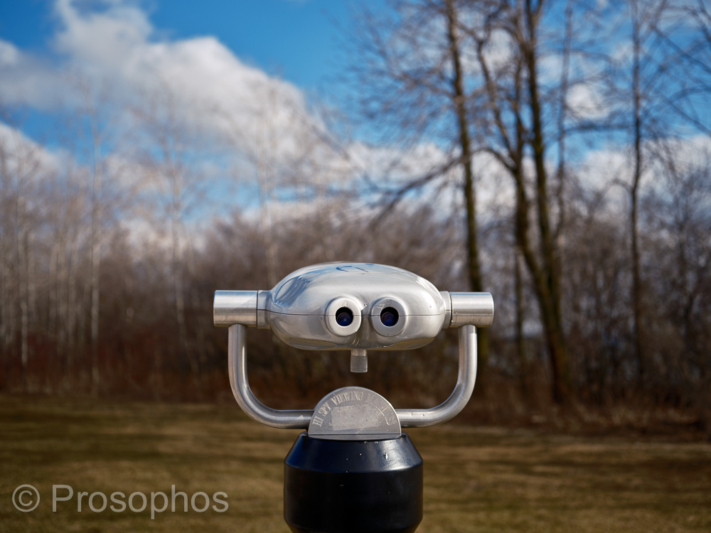 Sunday 4 - Prosophos - Fuji Fujifilm GFX 100S - GF 50mm f3.5