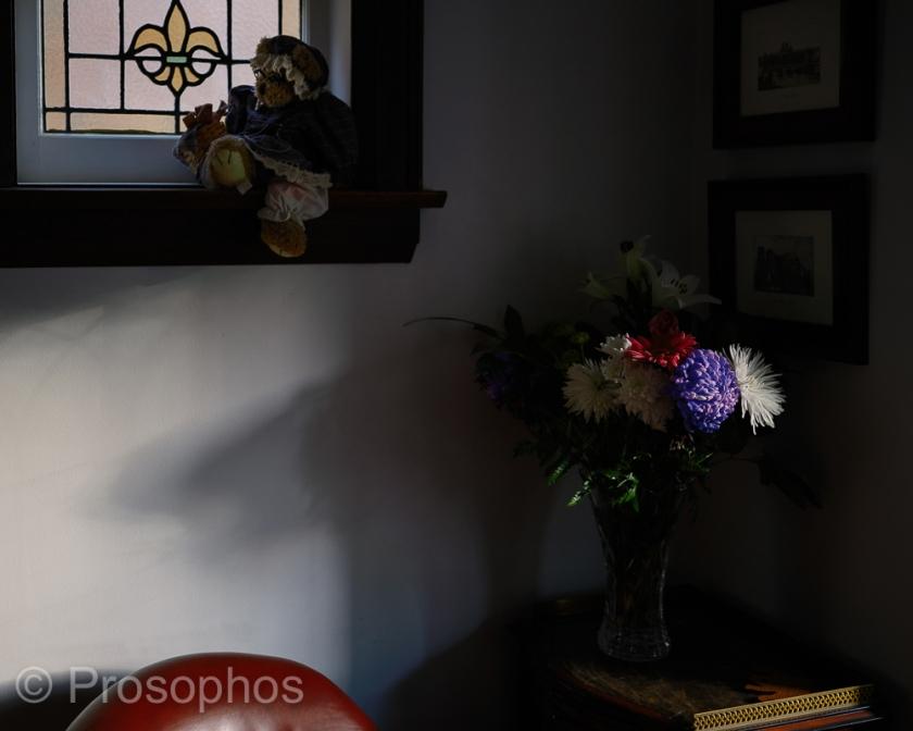 Still Life - Prosophos - Fuji Fujifilm GFX 100S - GF 50mm f3.5