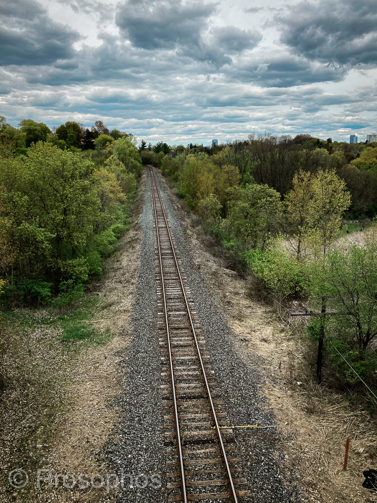 Tracks - Prosophos - iPhone